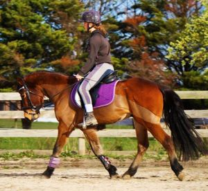 red-under-saddle-with-zoe