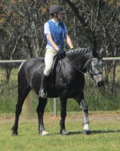 em riding blizz at culcairn show